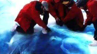 Alienigenas Congelados Fueron Encontrados Tras Excavaciones En La Antartida