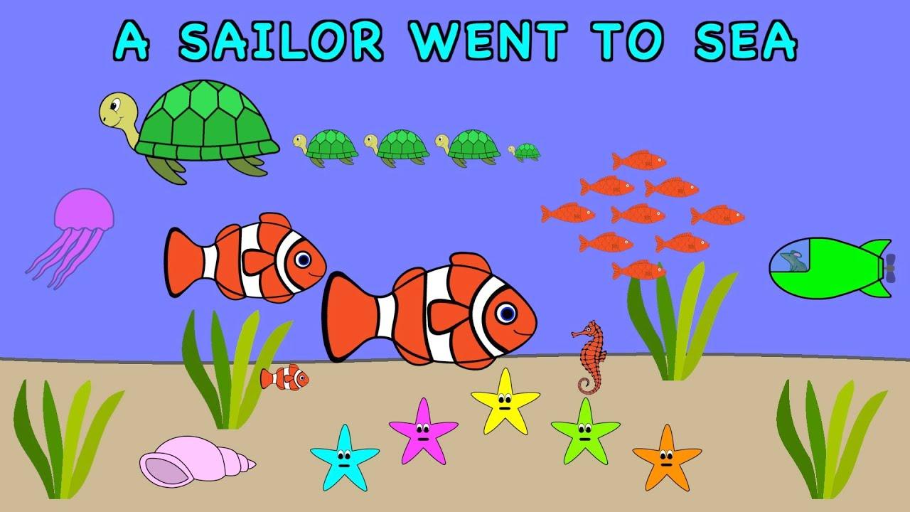 A Sailor Went To Sea Sea Sea | NURSERY RHYME | Rainbow Rabbit | (Official Video)