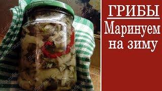 Маринованные грибы  Рецепт приготовления на зиму , а также для употребления сразу