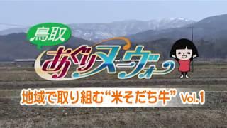 八頭町にある鳥取県畜産農協の哺育センターで仔牛の哺育をしている中山...