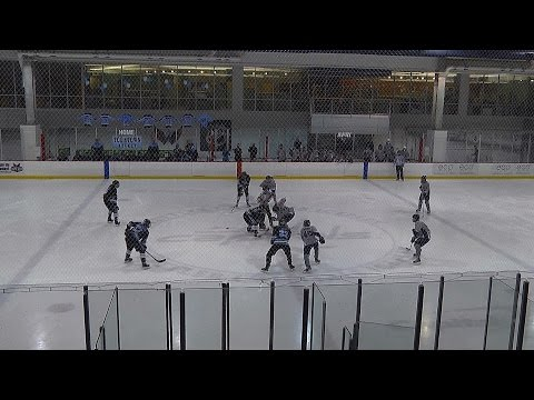 Scholastic Ice Hockey: Washington-Lee v. Yorktown 2016