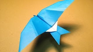 How To Make A Paper Plane / Origami Bird / Leach's Storm Petrel