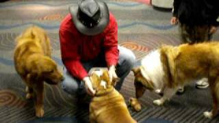 Keith Milby Shows Off His Talented Dogs And Great Training Skills At The Nashville Boat & Sportshow