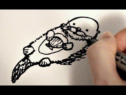 4c7019f653519 How to Draw a Cartoon Sea Otter - YouTube
