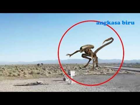 Penampakan alien terekam kamera