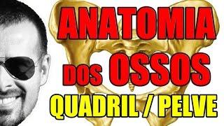 Vídeo Aula 056 - Sistema Ósseo/Esquelético: Acidentes ósseos do Quadril (Pelve ou Osso Pélvico)