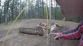 Hiking the Chamisa Trail Santa Fe, NM - YouTube