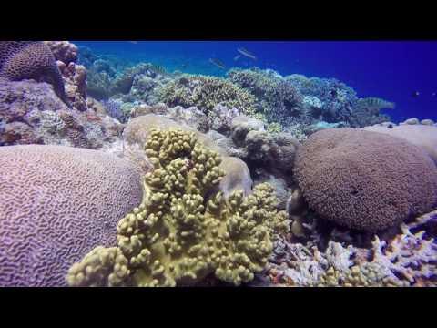 Island hopping in Palau Hatta@Banda Islands