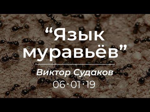Виктор Судаков - Язык муравьев