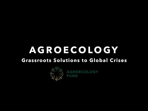 Agroecology Grassroots Solutions to Global Crises