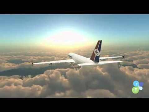 Yemen Airline