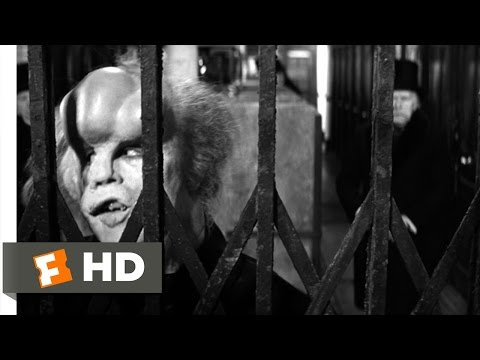 The Elephant Man (10/10) Movie CLIP - I Am a Human Being! (1980) HD