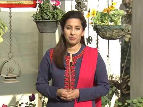छत पर बागवानी | Chhat Par Bagwani (Terrace Garden) (28-01-2017) (विशेषज्ञ: इला शर्मा)