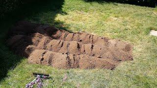 Rasen neu anlegen// Von Unkrautwüste zum Rasen   Teil 3