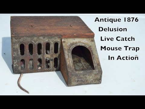 Antique 1876 Delusion Live Catch Mouse Trap In Action. mousetrapmonday