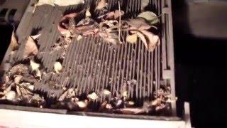 видео Замена салонного фильтра: как часто нужно это делать?