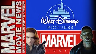 Punisher Reviews, Stan Lee Teases Black Widow Movie & More!   Marvel Movie News Ep. 156