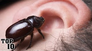 Top 10 Scariest Things Found In Human Ears
