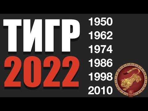 Что ждет Тигра в 2022 году - гороскоп на год Черного Водяного Тигра