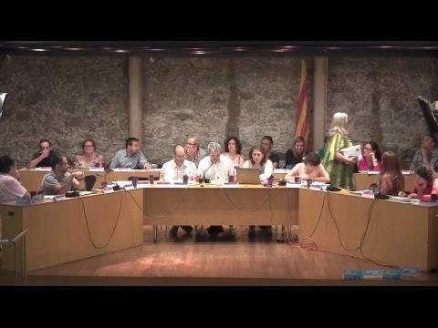 Consell de Districte d'horta-Guinardó. Sessió plenària de 6/7/2017