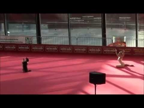 OEC 2014 – Dogdance Freestyle – Sandra & Lizzy