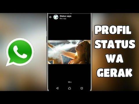 Terbaru Profil Status Whatsapp Gambar Bergerak
