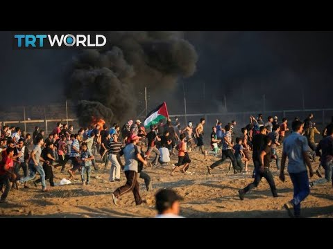World Bank says Gaza economy in 'free fall' | Money Talks