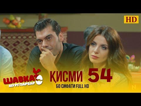 ШАВКАТ КИСМИ-54 / SHAVKAT QISMI-54