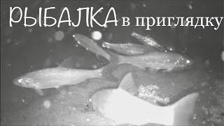 Рыбалка в приглядку Сравнение подводных камер ЯЗЬ 52 и Калипсо прямо на рыбалке в Якутии
