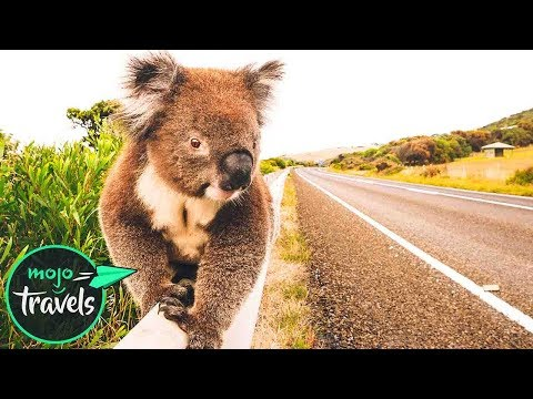 Top 10 Road Trips In Australia
