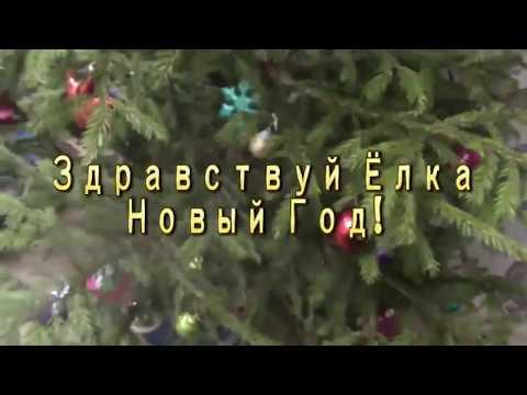 Здравствуй Ёлка Новый Год! Устанавливайте ёлку за 3 дня до Нового Года, не раньше