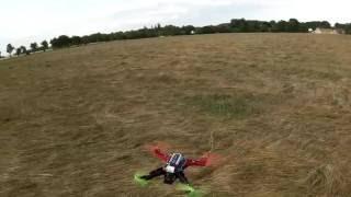 Totem Q330 Quad flight