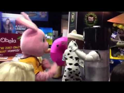 Duracell Bunny vs Energizer Battery fisticuffs! - YouTube