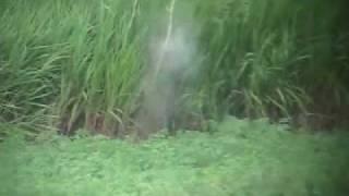 Ground Hog Hunting Pa Long Range Style
