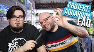 EURE Fragen, UNSERE Antworten - Projekt: Aquarium