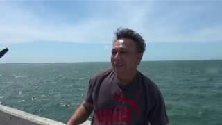 Lưới cá trên vịnh Tampa - Florida Part 2 by Pham Khanh