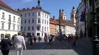 На улице в Любляне с музыкой!