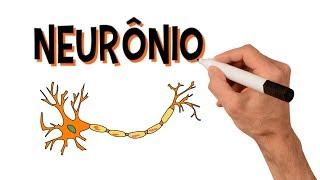 Chamada nervosa é uma célula