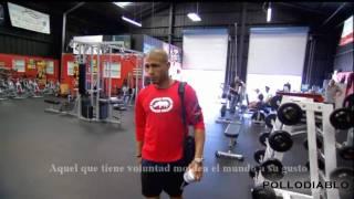 boxing training montage HL.wmv