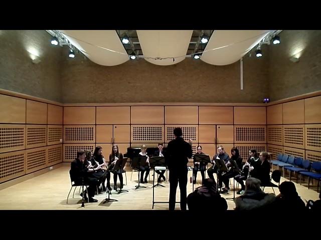 Blowsoc Clarinet Ensemble: Rey's Theme