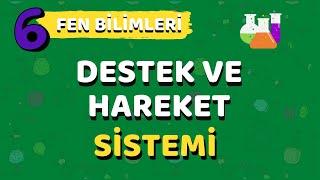 6.Sınıf Fen Bilimleri Destek ve Hareket Sistemi-Yardımcı Öğretmen