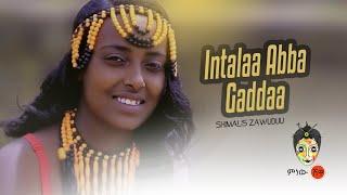 Ethiopian Music : Shimalis Zawuduu (Intalaa abba Gaddaa) - New Ethiopian Music 2019(Official Video)