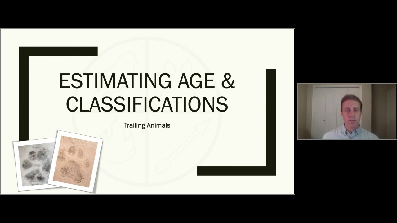Estimating Age & Classifications
