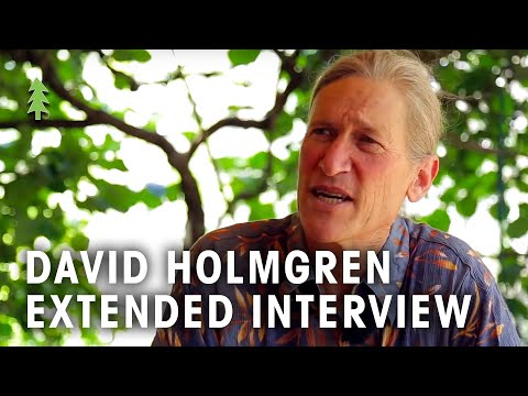 David Holmgren Interview on Permaculture, Energy Descent & F