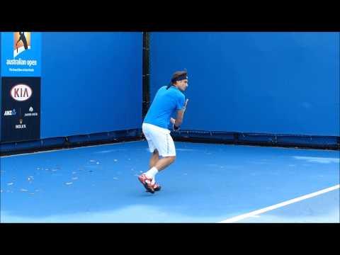 David Ferrer Practice 2015