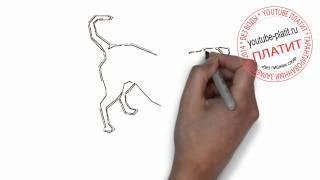 Нарисованные карандашом собаки  Как нарисовать карандашом грустную собаку