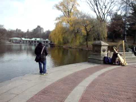 New York:  Small Clip of Lady Playing the Harp in Central Park