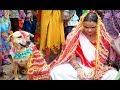 कुत्ते और लड़की की शादी, जिसे देखकर हैरान रह जायेंगे आप...