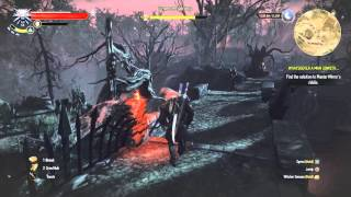 The Witcher 3 Hearts of Stone - How To Solve Master Mirror's Riddle