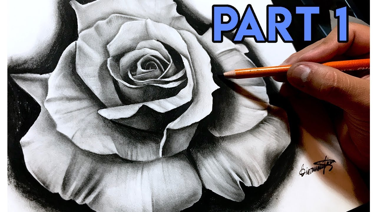 How To Draw A REALISTIC Rose - BEST Tutorial! Part 1 - YouTube